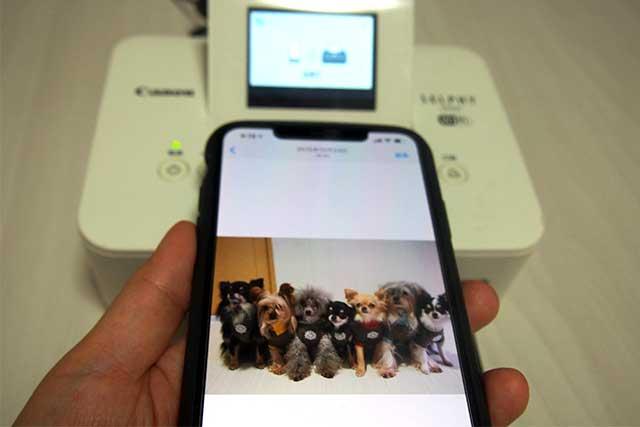 iPhoneにある写真を家庭用プリンターで印刷する