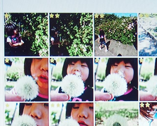 WonderPhotoBox(ワンダーフォトボックス)利用イメージ
