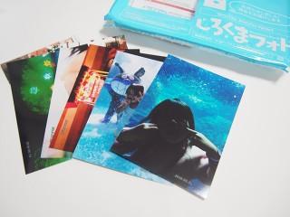 しろくまフォト-5円写真プリント - HOKKAIDO DAIYA CORPORATION