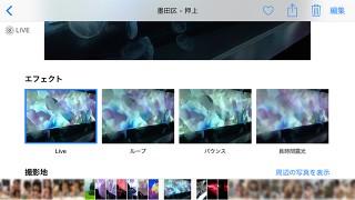 iOS11「Live Photos(ライブフォト)」新機能