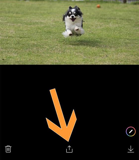 iPhoneアプリでLINEトークの写真をシェア