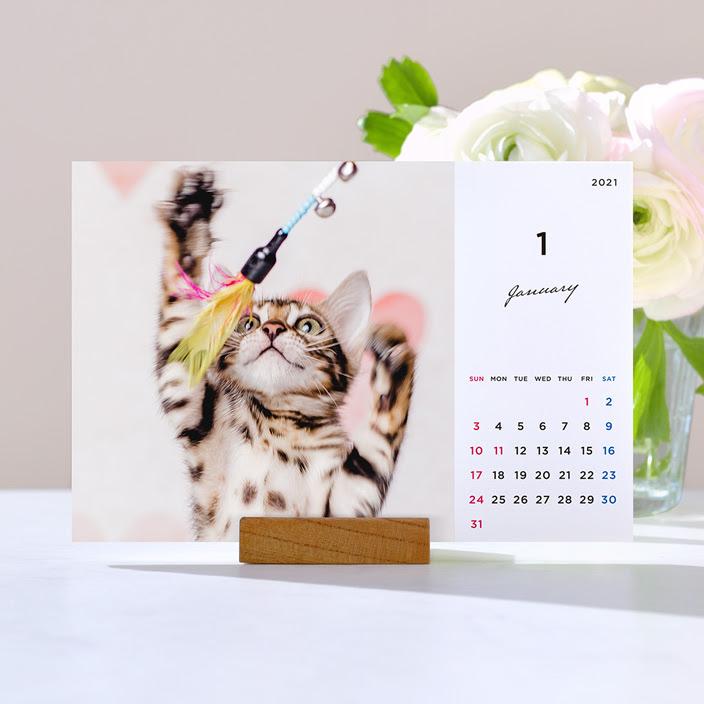 TOLOT卓上カレンダー2021年版