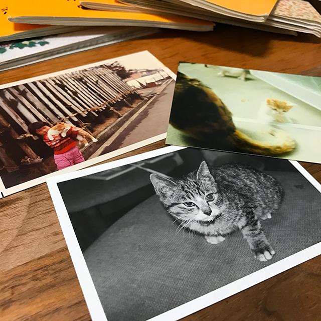 昔の紙焼き写真