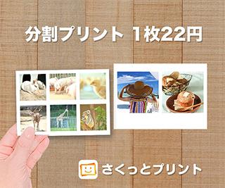 さくっとプリント1枚22円