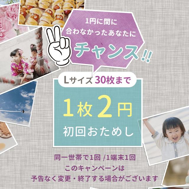 vivipri(ビビプリ)の1枚2円キャンペーン